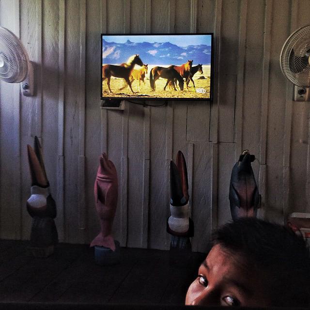 Un niño indígena Tikuna en Puerto Nariño ve National Geographic en un televisor adornado por totems de diferentes animales de la selva. Increíble efecto de la globalización en la más profunda selva amazónica.