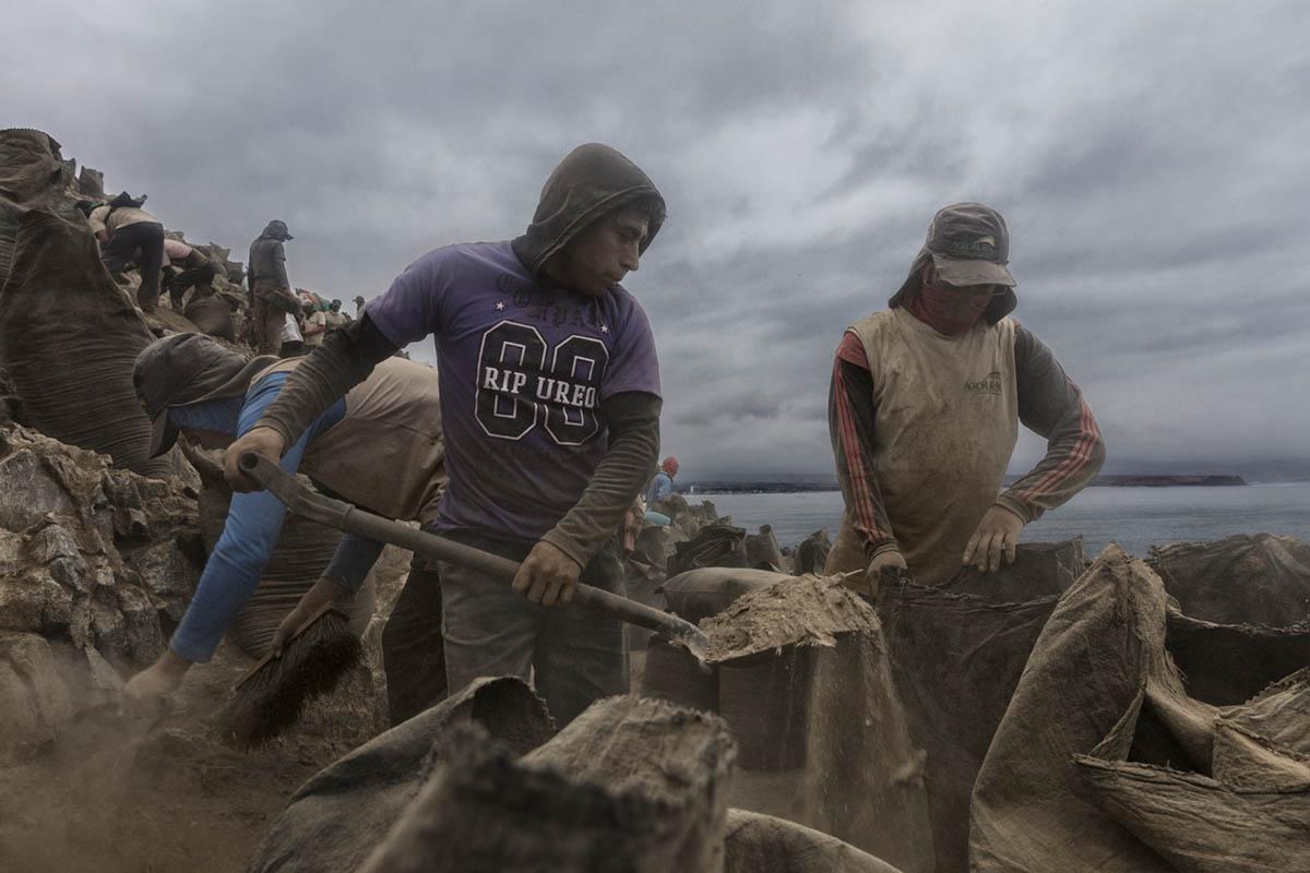 Isla Asia - Perú 2017: Trabajadores de Guano durante una jornada de trabajo en el interior de la isla Asia.